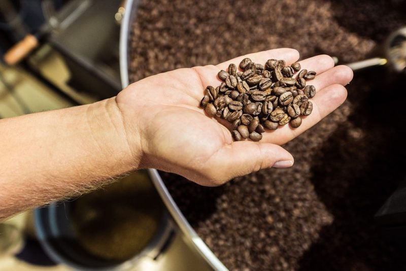 detail of a hand with roasted coffee beans